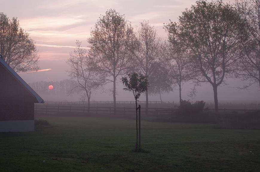 Nebel_2014_Schnatmeyer